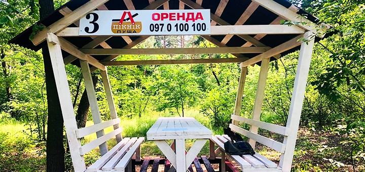 Аренда беседки с мангалом для компании в зоне отдыха «Пикник Пуща» в Пуще-Водице