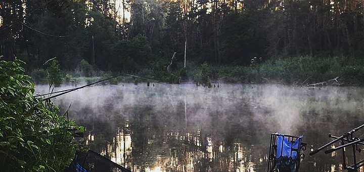 Спортивная рыбалка с арендой беседки, мангала и удочек на базе отдыха «Рыбацкая стрелка»