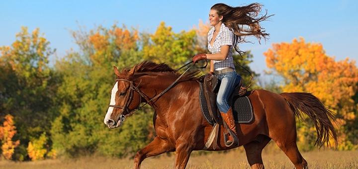 Скидка до 43% на прогулки на лошади от конюшни домашнего типа «Труханівська Січ»