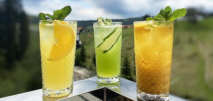 От 3 дней оздоровительного релакс-отдыха в отеле «Гора» в Буковеле