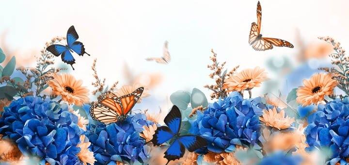 Скидка 50% на билеты на выставку живых бабочек и других насекомых в ТРЦ «Фестивальный»