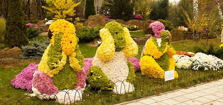 Экскурсионный тур «Осенние краски Харькова: парад хризантем!» от агентства «Зовнішсервіс»