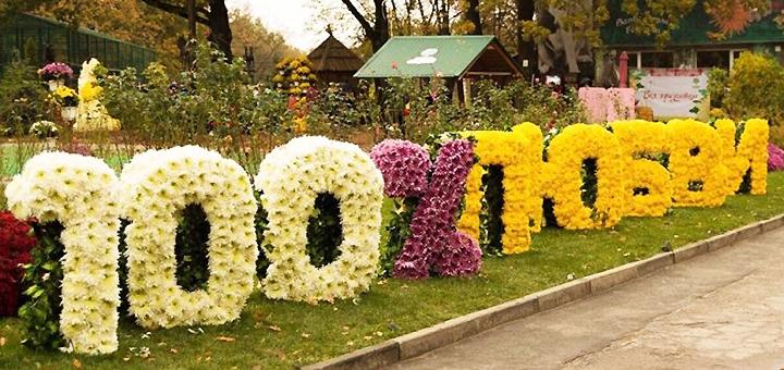 Экскурсионный тур «Осенние краски Харькова: парад хризантем и Краснокутский дендропарк»