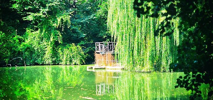 Наземная экскурсия «Из Голосеево в Китаево» от туристической компании «Матей Тревел»