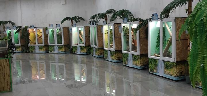 Cкидка 50% на билеты на посещение выставки «Змеиная ферма»