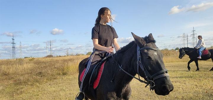Скидка 50% на прогулку на лошадях от конюшни «Позитив»