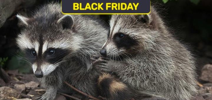 Билеты на посещение контактного зоопарка «Страна ЕНОТиЯ» в любой день недели