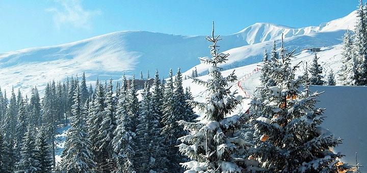Автобусный горнолыжный тур в Буковель от туристической компании «Universal Travel»
