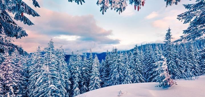 Трехдневный тур в Карпаты на католическое Рождество от туристической компании «ProUkraine»