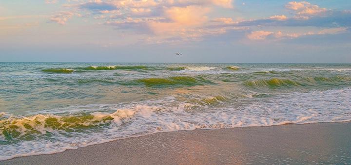 Тур «Майские праздники на море» с посещением Аскании-Нова и источника «Арабатские Термы»