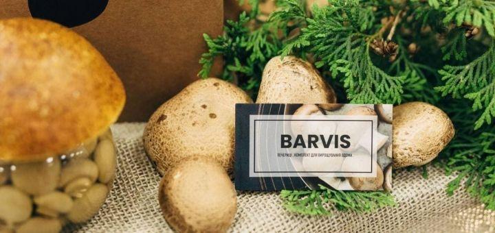 Набор для выращивания королевских шампиньонов от грибного магазина «Barvis»